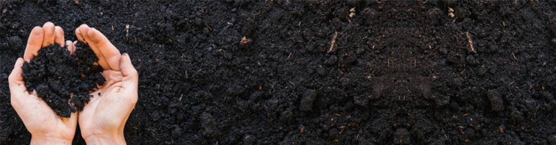 Soil Poisoning Mostert Pest Control